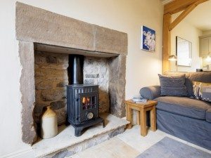 Tub Cottage log burner